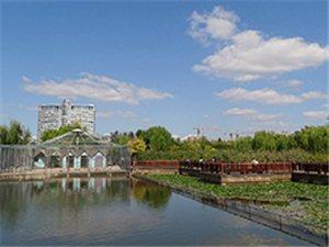蓝天白云下的人民公园。好美~