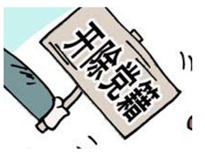 安徽省公安�d原副巡��T王�x被�_除�h籍
