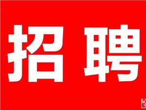 世界500强碧桂园诚聘销售顾问