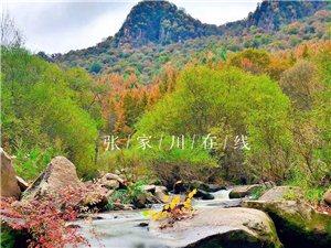 金秋的关山小麦积穿上花衣裳,是陇上的一个奇景