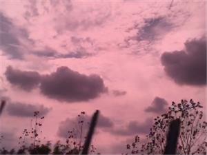 今天的云??可真美~