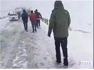 甘肃国庆突降大雪,最厚15cm!数千两车被困11个小时!