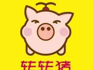 惊艳江城!元旦转转猪即将来袭!