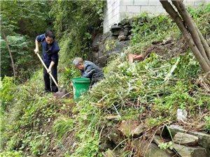 旬阳县太极城文化研究会办公新区植树忙