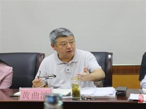 黄石市政协来冶调研临空经济区规划发展