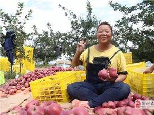 清水:产业兴,乡村美,农家富