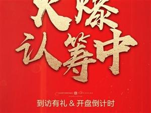 【祥诚・公园首府】火爆认筹中
