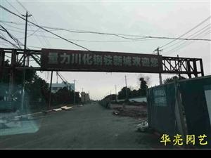 酒香不怕巷子深,位于青白江的四川能投量力川化��F城的�G化我��在合作了