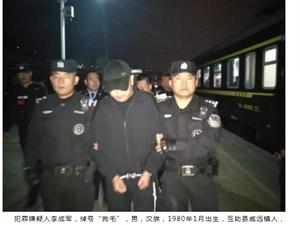 互助警方�闹芯��境押回��萘�F伙主要犯罪嫌疑人李成�(狗毛
