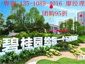 台湾鳳崗碧桂園樓盤精裝修洋房銷售簡介