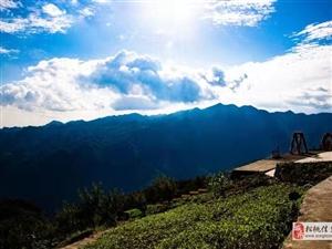 你们旅游为什么都喜欢去泰国、云南、新疆呢,大绵阳就不能吸引你?