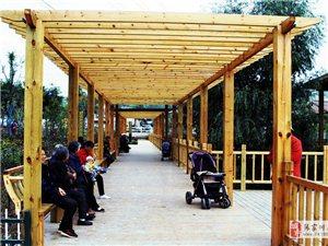 【70年巨变】张家川最西边的小公园,市民都评价说好看