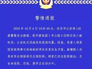 #网警辟谣# 【网传安庆某小区附近因家庭纠纷致4人死亡 谣言!】