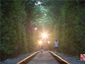 高州这几个人竟然跑到铁路上拍视频和拍照,人身安全岂可儿戏?