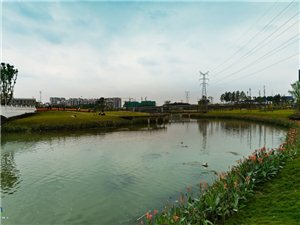 【�D�f】新�_��的�V�h�R牧河�竦毓��@,里面花�t柳�G,碧波�漾