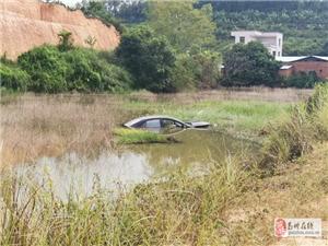 什么操作?高州一辆小车竟然开进了池塘里,幸好水不深……