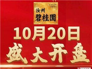 定了!汝州碧桂园高层首推,别墅区的成品美宅,10月20日盛大开盘!