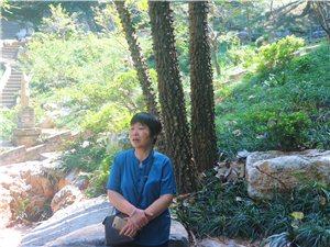 忆江南的风景2