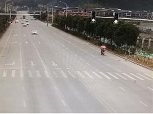 七乐彩人注意,散原中学分校路段即将新增2处电子警察抓拍点!