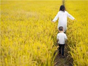 孩子成长道路上的一点珍藏记忆