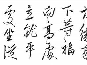 宋光胜先生书法作品欣赏