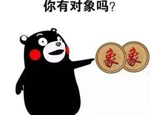 """1�K�X�I""""�ο蟆蹦阍敢�幔�"""