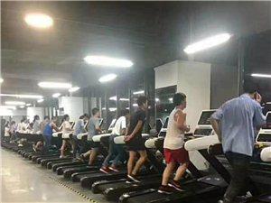 智博推荐:东莞电子厂招聘普工