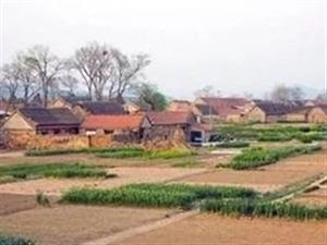 省里公布!博兴这些村要出名了!涉及乔庄、纯化、湖滨、店子……