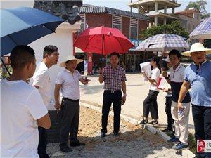 麦曦同志指导石湾街道新农村建设工作