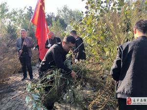 石寨铺镇开展祭扫革命烈士墓活动