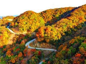 在秋天的这些日子里,我迷恋上了多彩汉江源