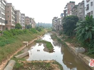 高州山美这里污水直排污染严重,河边居民经常能闻到阵阵臭味!