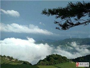 张家川在线红色旅游摄影作品被县委机关工委收藏