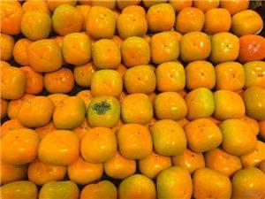 霜降养生吃柿子好吗?霜降养生吃柿子的好处,博兴有谁知道呀?