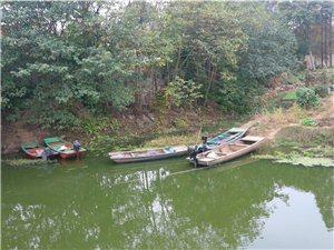 滁州市五孔桥的环境
