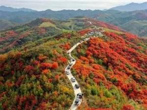 """宜阳县上观乡:打通农村交通基础设施""""最后一公里"""""""