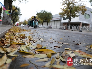 临近初冬天气降温,博兴街头出现这般景象
