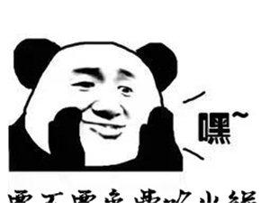 """1111下井二哥火�""""免�M吃"""" 您了解�幔�"""