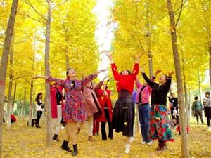 【美丽宜阳】滨河公园秋意浓