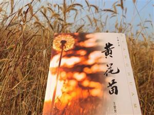 宜阳县召开作家王爱芳长篇小说《黄花苗》研讨会