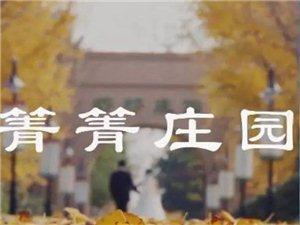 "箐箐�f�@:""醉""美金秋,�y杏�~�S"