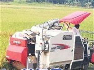 化州机械收割水稻解放劳动力