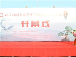 滁州市人民广场的盆景花会要等十点政府干部到才能给老百姓看