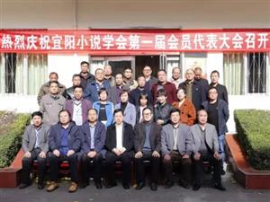 宜阳县小说协会成立