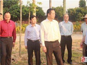 邓泽友调研精准扶贫、人居环境整治、 新农村建设工作