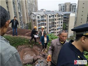 广安区综合执法局 开展专项行动整治白色垃圾
