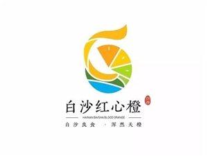 白沙县举办2019年红心橙品牌推介会