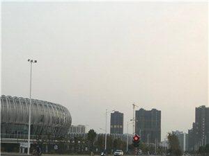 多少交通事故后,��南�w育中心�c金塘花苑十字路口安�b了移�邮郊t路��