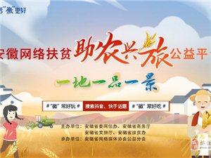 安徽网络扶贫助农兴旅公益平台