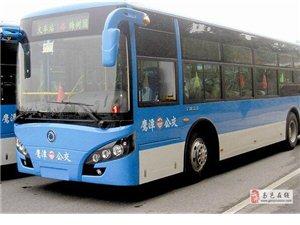 高邑公交 免费乘车